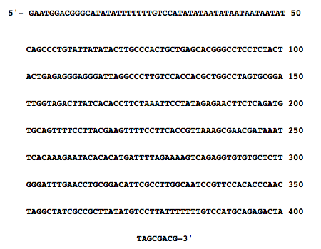 Goodman figure DNA sequence